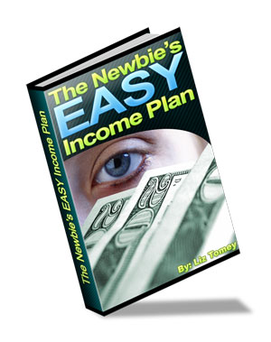 online income plan